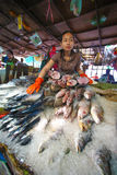 comperando nella pagoda dell'argento di Royal Palace di festa dell'indipendenza della Cambogia Fotografia Stock