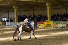 Comperition occidental del montar a caballo Foto de archivo