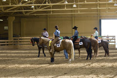 Comperition occidental del montar a caballo Imagen de archivo