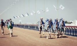Competência de camelo em Dubai Imagens de Stock Royalty Free