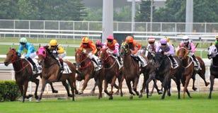 Competencia de la carrera de caballos Fotografía de archivo libre de regalías