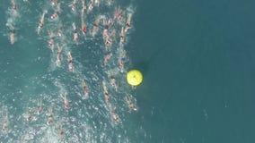 Competencia de la natación almacen de video