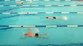 Competencia de la natación en la casa de la universidad física de la cultura de comunicaciones en St Petersburg metrajes