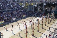 Competencia de madera de la tajada, Sydney Easter Show imagen de archivo libre de regalías