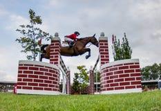 Competencia de salto del caballo Imagen de archivo libre de regalías