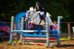 Competencia de salto del caballo Fotos de archivo
