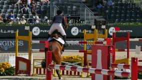 Competencia de salto internacional de las cercas del caballo almacen de metraje de vídeo