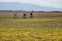 Competencia del andventure de la bici de montaña Imágenes de archivo libres de regalías
