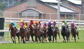 Competencia en carrera de caballos Foto de archivo libre de regalías