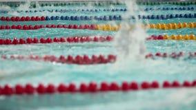 Competencia en la natación a la vista lateral del ángulo bajo almacen de video