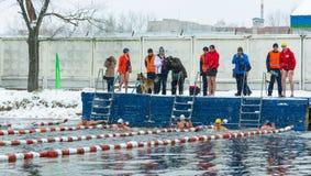 Competencias en el invierno que nada el 4 de noviembre de 2016 en la ciudad o Fotografía de archivo libre de regalías