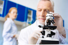 Competent medical worker doing experiment. Laboratory work. Attentive scientist expressing positivity and looking into ocular while enjoying his work royalty free stock image