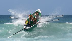 Competição australiana da liga dos remadores da ressaca Fotografia de Stock