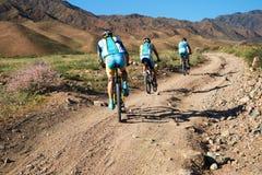 Competição da aventura da bicicleta de montanha Foto de Stock
