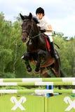 Competição da equitação Foto de Stock
