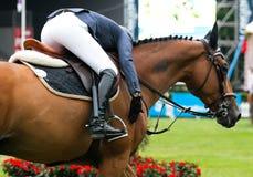 Competição de salto do cavalo Fotografia de Stock Royalty Free