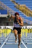 Competição do atletismo Imagens de Stock Royalty Free