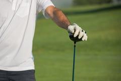 Competição do golfe do clube que joga o jogo engraçado do esporte imagens de stock royalty free