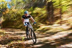 Competição do Mountain bike Imagens de Stock