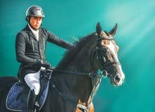 Competição do Showjumping, cavalo de baía e cavaleiro no uniforme preto que vai executando o salto Fotografia de Stock