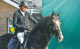 Competição do Showjumping, cavalo de baía e cavaleiro no uniforme preto que vai executando o salto Foto de Stock Royalty Free
