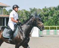A competição do Showjumping, o cavalo de baía e o cavaleiro na execução uniforme branca saltam sobre o freio Fotos de Stock