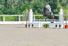 A competição do Showjumping, o cavalo de baía e o cavaleiro na execução uniforme branca saltam sobre o freio Imagens de Stock Royalty Free