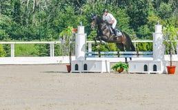 A competição do Showjumping, o cavalo de baía e o cavaleiro na execução uniforme branca saltam sobre o freio Imagem de Stock
