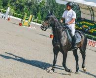 A competição do Showjumping, o cavalo de baía e o cavaleiro na execução uniforme branca saltam sobre o freio Fotografia de Stock