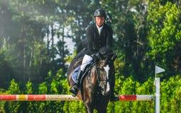 A competição do Showjumping, o cavalo de baía e o cavaleiro na execução uniforme preta saltam sobre o freio Fotos de Stock Royalty Free