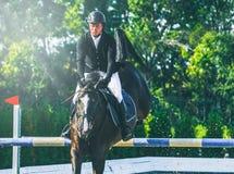 A competição do Showjumping, o cavalo de baía e o cavaleiro na execução uniforme preta saltam sobre o freio Imagem de Stock