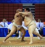 Competição feroz Fotos de Stock Royalty Free
