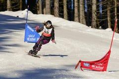 Competições da escola do esqui da snowboarding Imagem de Stock Royalty Free