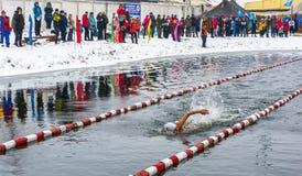 Competições no inverno que nada o 4 de novembro de 2016 na cidade o Foto de Stock Royalty Free