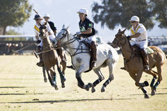 Competiam quatro do polo Foto de Stock