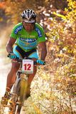 Competición de la bici de montaña en bosque del otoño Fotos de archivo libres de regalías