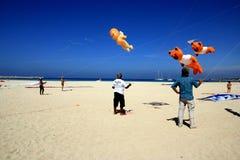 Competición de la cometa en la playa de la ceja del lo de San Vito, Sicilia Fotografía de archivo libre de regalías
