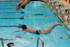 Competición de la natación Fotos de archivo