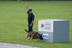 Competición del perro de policía Imagen de archivo libre de regalías