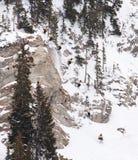 Competición libre 5 del esquí del International de la secuencia del competidor Imagenes de archivo
