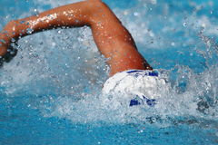 Competición de la natación: Juegos 2010 del verano de Alpe Adria Imágenes de archivo libres de regalías