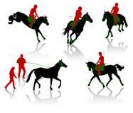 Competición de los caballos Imagen de archivo