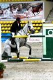 Competiciones del caballo Imagenes de archivo