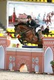 Competiciones del caballo Fotos de archivo libres de regalías