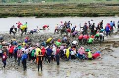 Competidores en raza famosa del fango de Maldon Fotos de archivo libres de regalías
