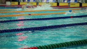 Competing in a swimming race. The Competitive swimming Mens free style stock footage