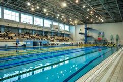 Competição da natação Imagem de Stock Royalty Free