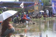 Competição da pesca dos peixes Fotos de Stock Royalty Free
