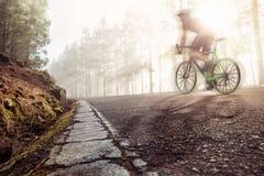 Competir con la bicicleta en un camino forestal Imágenes de archivo libres de regalías