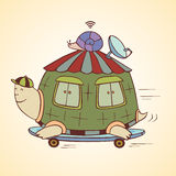 Competir con la tortuga Imagen de archivo